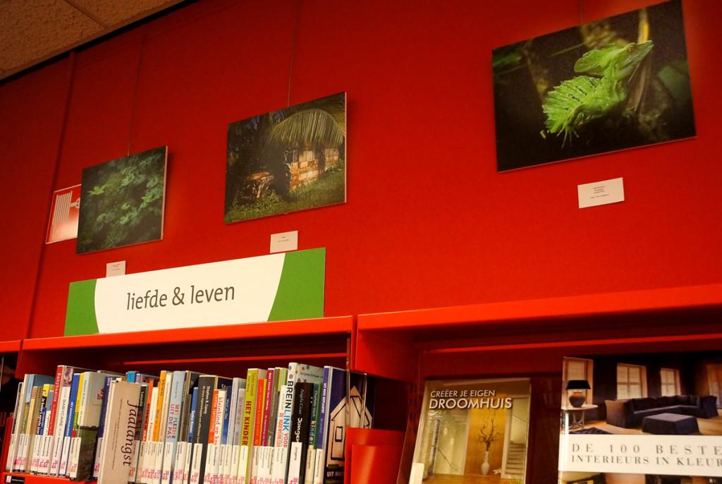 Tentoonstelling Bibliotheek Boxmeer DSC07703 (4)